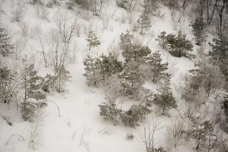 Korea:  Deogyusan Snow