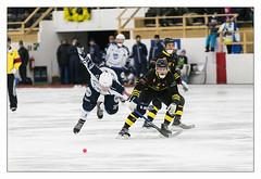 IFK Rättvik vs Solna AIK (Swede66) Tags: bandy game winter skates field fast action sport sweden ifkrättvik solnaaik promotion