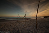 spiaggia d'inverno (paolotrapella) Tags: spiaggia inverno clouds sky italy sabbia sand sunset tramonto