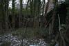 Hidden (tbolt-photography.com) Tags: derelict derp derelictplaces derelictbuildings decay abandoned abandonedplaces abandonedbuildings urbex urbandecay nikon