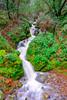 DSCF6297.jpg (RHMImages) Tags: xt2 landscape storm river southyuba water fuji waterfall southyubariver nevadacity fujifilm nevadacounty