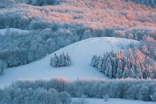 Bieszczadzka_zima