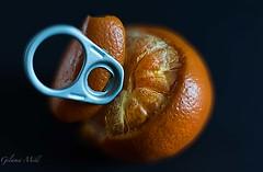 #MacroMonday#Citrus#RingpullOrange (Gilama Mill) Tags: citrus fruit macro orange ringpull ring food macromonday