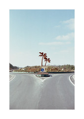 (Dennis Schnieber) Tags: 35mm kleinbild analog color film tropical island brandenburg