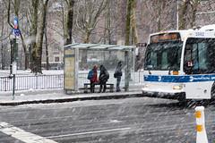 Waiting for the Bus during Winter Storm Quinn in Brooklyn (Diacritical) Tags: nikond850 pattern 2470mmf28 ¹⁄₈₀secatf50 march72018 30615pm f50 70mm winterstormquinn quinn brooklyn winter snow wind