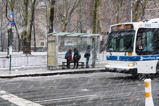 Waiting for the Bus during Winter Storm Quinn in Brooklyn
