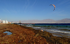 A small puddle on the shore of the Red Sea (rel-tour) Tags: red sea iarael eilat beach wind water desert kiteboarding adventure beauty in nature blue clear sky extreme sports flying horizontal leisure activity lifestyles outdoors parachute photography scene tourism