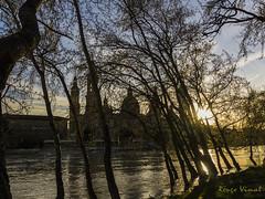 Atardece en la ciudad (Rouge Visual) Tags: rio river zaragoza ebro trees árboles sky basílica pilar picture imagen atardecer sunset city ciudad camara camera park
