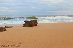 Fresh Sand (ChrisF_2011) Tags: florida marineland rivertosea beach scenic landscape sand coquina