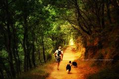 """The best friends..."" (Ilargia64) Tags: caminodesantiago camino nature forest pilgrim pilgrimage solitude discover explore friendship adventure galicia spain dogs life places travel journey amayasanchez"