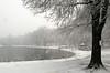 Winter Scene (chantsign) Tags: snow gazebo post snowing winter pond lake branches