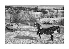 A cold winter (Jan Dobrovsky) Tags: carpathians leicaq landscape winter people reallife rural snow countryside monochrome action car sunshine blackandwhite ukraine village horse countrylife document