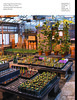 Grow-Spring2018 40 (NetAgra) Tags: inprint greenhouse education science nature grow research uwmadison horticulture