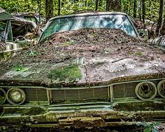 Old Car City 88 (augphoto) Tags: augphotoimagery abandoned auto automobile car decay old weathered white georgia unitedstates dodge