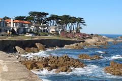 IMG_7619 (mudsharkalex) Tags: california pacificgrove pacificgroveca