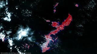 The Ryukyu Islands of Japan after Super Typhoon Chaba