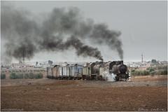 Bosra Bound (channel packet) Tags: syria steam train railway railroad hedjaz desert transport davidhill