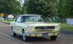 1966 Ford Mustang DL-43-53 (Stollie1) Tags: 1966 ford mustang dl4353 lelystad