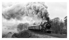 B12 with a rake of teaks on the Severn Valley Railway (andrewjplummer) Tags: b12 severnvalley steam lner heritage preserved black white train engine