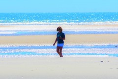 Shell collecting (thomasgorman1) Tags: colors processed treated nikon woman beach tide sea ocean baja mx mexico zoom zoomed walking outdoors landscape seascape horizon cortez sandbar lowtide