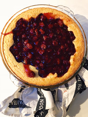 73/365 (moke076) Tags: 2018 365 project 365project project365 oneaday photoaday iphone cell cellphone mobile pi pie day piday nerd cherry cook homemade meal dessert food filled towel