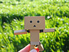 natur lover (*°ameLIE*°) Tags: danbo love bokeh color figure minifig toy toys photography green nature sun sunset