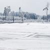 Sturmschäden (zeh.hah.es.) Tags: ktzh schweiz switzerland winter schnee snow bonstetten weiss white grau gray grey baum tree feld