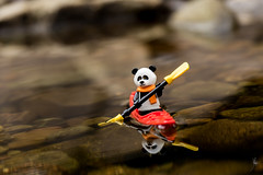 Kayaking panda (Ballou34) Tags: 2017 7dmark2 7dmarkii 7d2 7dii afol ballou34 canon canon7dmarkii canon7dii eos eos7dmarkii eos7d2 eos7dii flickr lego legographer legography minifigures photography stuckinplastic toy toyphotography toys stuck in plastic kayak panda paddle scarf reflection water river scotland royaumeuni gb