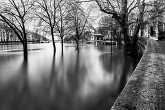 Crue de la Seine (l.pigault) Tags: seine crue matin eau 5m71 fleuve paysage paris pauselongue nikon 1835f3545 d800