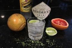 Thinking of Summer! (brucetopher) Tags: ginandtonic gt gin tonic summer drink highball tonicwater grapefruit lime hendricks schweppes fruit fresh citrus juicy liquor zest stilllife beverage