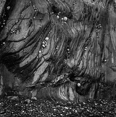 Rock Structure (olgl) Tags: filmisnotdead 1minagitation 6x6120film epsonperfectionv700 ishootfilm iso4000930min69f ilforddelta400pro ilfordilfotecddx14 england unitedkingdom abstract nature seascape blackwhite
