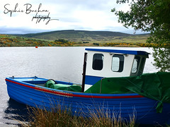 Boat hidden in a lake, Aberdeen (Trafotoz_Photography) Tags: exercise swimming boats water spring holiday aberdeenshire unitedkingdom uk scottish summer scotland nature photography landscape lake boat aberdeen blackness