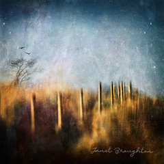 Those Beating Wings (Landscapes of Dreams series) (Janet_Broughton) Tags: edge50 lensbaby dreamscape landscape photoart blur