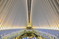 The Oculus (M!G Photography) Tags: landscape cityscape city tranportation people architecture travel newyork holiday light colour ngc