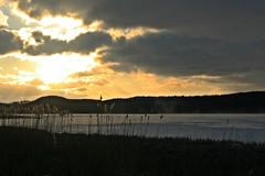 Sonnenuntergang am Schmachter See (lt_paris) Tags: urlaubinbinz2018 rügen binz schmachtersee sonnenuntergang wolken schilf himmel winter