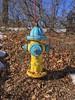 Mueller Co. - Super Centurion BSR - Nashua, NH (nhhydrants) Tags: nashuanh hydrant