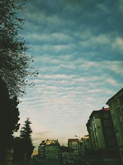 Stairway on sky (Furkan Ozcelik) Tags: sky cloud cloudy stair weather turkey morning city lookup tree builds road sun gökyüzü sabah gündüz güneş bulut bulutlu merdiven yol ev bina ağaç ışık şehir yukarıbak yukarı bak