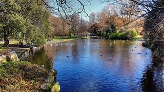 Parque - Park