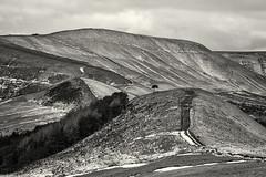 The Great Ridge (l4ts) Tags: landscape derbyshire peakdistrict darkpeak snow thegreatridge backtor barkerbank mamtor rushupedge tree blackwhite monochrome coffeetoning