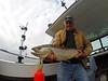 Happy Birthday Dad! (Matt Champlin) Tags: fish fishing happy birthday happybirthday dad family trout lakeontario trolling