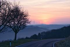 Sonnenaufgang / Sunrise (reipa59) Tags: sky sunrise landscape germany frühling trees nebel nature rheinlandpfalz earlymorning frühnebel nordpfalz bäume landschaft himmel spring natur baum sun sonnenaufgang pfalz sonne street landstrase strase countryroad
