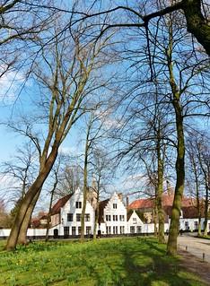 (80) Allemaal Brugge
