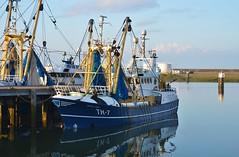 TH-7 Adriana Maria (Hugo Sluimer) Tags: portofrotterdam port hav onzehaven nlrtm nederland zuidholland holland