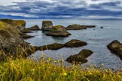 The Coast at Arnarstapi No. 3 - Iceland (dejott1708) Tags: arnarstapi snæfellsnes gatklettur iceland ísland clouds coast ocean sea rocks basalt