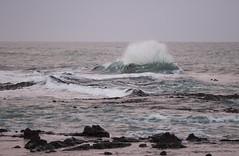 Dusk at Curio Bay (fantommst) Tags: lisaridings fantommst newzealand nz southland curio bay dusk rocks waves curiobay water ocean sea pacific wave rocky coast coastline pink beach sky catlins