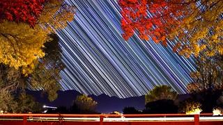 Fall Star Trails