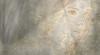 gggggggg (Poli Maurizio) Tags: woman girl female sketch portrait drawing drawingportrait abstractportrait digitalportrait actress actor celebrity hollywood pencil coloredpencil pencilportrait freehand fine art sky blackandwhite color beauty water hair artist disegno ritratto schizzo manolibera occhi chiaroscuro matita dibujos fantasy fantastic facebook twitter linkedin pinterest instagram tumblr bouchac indoor outdoor italy baby sicily ocean sea sun snow clouds man barocco illustrazione naturalism background bed concept grey conceptart atmosferic watercolor technique surrealism 3dweddingpartyfamilytravelfriendsjapanvacationlondonbeachcaliforniabirthdaytripnycsummernatureitalyfrancemeparisartflowerssanfranciscoeuropechinaflowernewyorkwaterpeoplemusiccameraphone 3daustraliachristmasusaskygermanynewcanadanightcatholidayparkbwdogfoodsnowbabysunsetcitychicagospaintaiwanjulybluetokyoenglandmexicowinterportraitgreenred 3dpolimaurizioartworkredfunindiaarchitecturegardenmacrospringthailandukseattlefestivalconcertcanonhouseberlinhawaiistreetlakezoofloridajunemaywhitevancouverkidstreecloudstorontobarcelonageotaggedhome 3dbwbwdigitalseadaytexasscotlandcarlighthalloweencampingchurchanimalstreeswashingtonrivernikonaprilbostongirlirelandgraffitiamsterdamrocklandscapeblackandwhitecatsnewyorkcitysanromeroadtripurbanhoneymoonocean 3dwatercolorsnewzealandmarchblackmuseumyorkhikingislandmountainsyellowsydneysunhongkongshowgraduationcolorfilmmountainanimallosangelesschoolmoblogphotodogs 3dartdesigndisegnosiciliacalabriabasilicatacampaniamarcheabruzzomoliselaziotoscanaemiliaromagnalombardiavenetofriuliveneziagiuliapiemontevalledaostaliguriatrentinoaltoadigepuglia 3dlandscapepaesaggiolunasolemarenuvolecittàtramontoalbamontagnecollinenebbialuceautomobilearredamentointerniesterninaturamortacieloragazzadonnauomobambinofruttabarca 3dcanigattirinascimentomodelbarocconaturalismomattepaintingfuturismoastrattismocubismosurrealismorealismoiperealismoclassicismorococomanierismoromanticismoimpressio