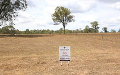 Lot 226 Hillview, Louth Park NSW