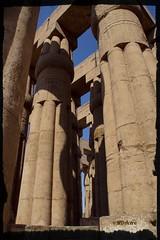 Lotos en el cielo (mariadoloresacero) Tags: acero mdacero capullos papiroforme lotiforme colonnes columnas ilca68 sony egypt egypte temple egipto templo luxor