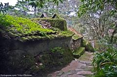 Convento dos Capuchos - Sintra - Portugal 🇵🇹 (Portuguese_eyes) Tags: portugal sintra
